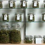 La presenza di dispensari per la cannabis porta ad una diminuzione della criminalità