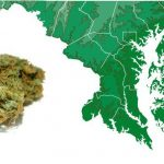 Il Maryland vuole depenalizzare il possesso personale fino ad un'oncia di cannabis