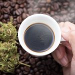 Caffè e Cannabis: quale la vera interazione?