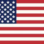 Quale sarà il decimo Stato degli USA a regolamentare? Ecco i 5 più probabili