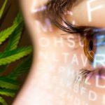 Studio: uso topico dei cannabinoidi riduce l'iperalgesia corneale e l'infiammazione