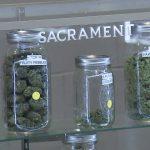La Chiesa Californiana della Cannabis fa causa alla Polizia per le irruzioni immotivate