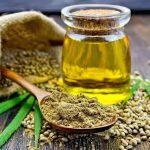 """Studio: L'olio di canapa può contenere THC sufficiente per un """"falso positivo"""" nei test delle urine in Colorado e in Canada"""