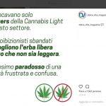 """Delirio della Rivista Dolce Vita Magazine su Instagram: """"Antiproibizionisti sbandati che vogliono l'erba libera a patto che non sia leggera"""""""