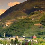 La Provincia di Bolzano sosterrà le spese della cannabis ad uso medico per i pazienti