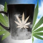 Cannabis e Caffè: un nuovo studio rivela nuove interazioni