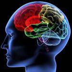 Studio: i cannabinoidi possono alleviare la distonia e altri sintomi della malattia di Huntington
