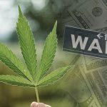 Cronos Group: la prima società della Cannabis ad essere quotata a Wall Street