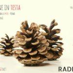 """L'Associazione FreeWeed partecipa alla rubrica """"Pigne in Testa"""" di Radio 32 – In diretta 10 aprile, ore 20.30"""