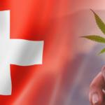 I legislatori svizzeri approvano all'unanimità il programma pilota di legalizzazione della cannabis: l'ultima parola al Consiglio Nazionale
