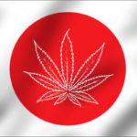 """In Giappone si coltiva Canapa """"industriale"""" legalmente? Ecco la prima Associazione autorizzata del Paese"""