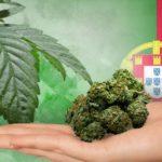 Il Parlamento del Portogallo approva la legislazione che regolamenterebbe l'uso medico della Cannabis