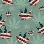 Stati Uniti: Si attende la firma di Trump sulla Legge Federale che aprirebbe all'uso medico della cannabis per malattie terminali