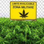 """In arrivo la """"nuova"""" Cannabis di Stato FM1: disponibile da luglio 2018"""