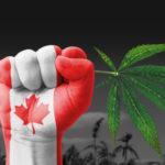 Canada: 100 milioni di Dollari per la Campagna Educativa sulla Cannabis a livello Nazionale