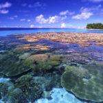 Il Governatore delle Isole Marianne Settentrionali firma la legge sulla Legalizzazione della Cannabis