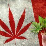 Canada: Oggi termina il Proibizionismo e si attiva la Legalizzazione della Cannabis
