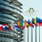 Parlamento Europeo: Commissione per l'Ambiente vota per l'autorizzazione della cannabis ad uso medico