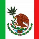 Il Messico verso la Legalizzazione Totale