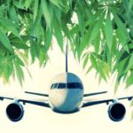 Canada: sui voli all'interno del Paese è possibile trasportare fino a 28,5 grammi di Cannabis