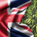 """Regno Unito: dal 1° novembre entra in vigore il nuovo """"Piano Cannabis ad uso medico"""""""
