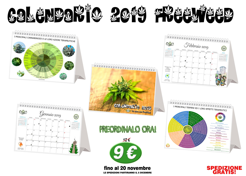 Calendario 12 Mesi.Calendario 2019 Freeweed 12 Mesi Con Infografiche Sulla