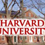 Nuovo Studio dell'Harvard University: consumo di cannabis correlato ad aumento del numero di spermatozoi