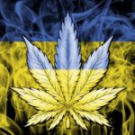 Ucraina: Ministro della Salute favorevole alla cannabis ad uso medico